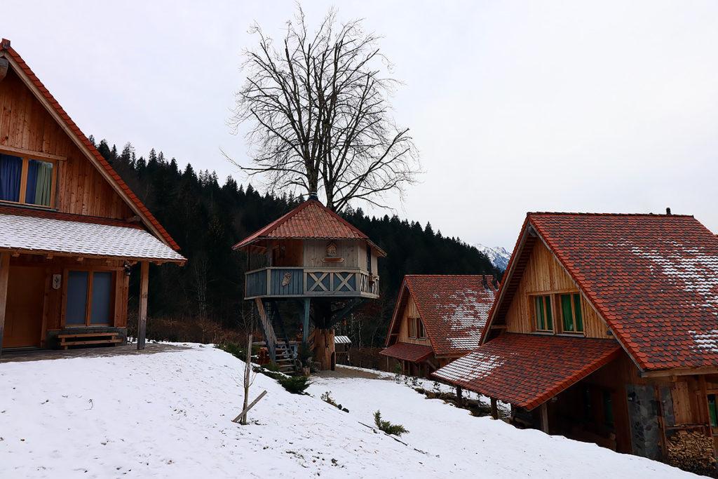 glamping in friuli casa sull'albero