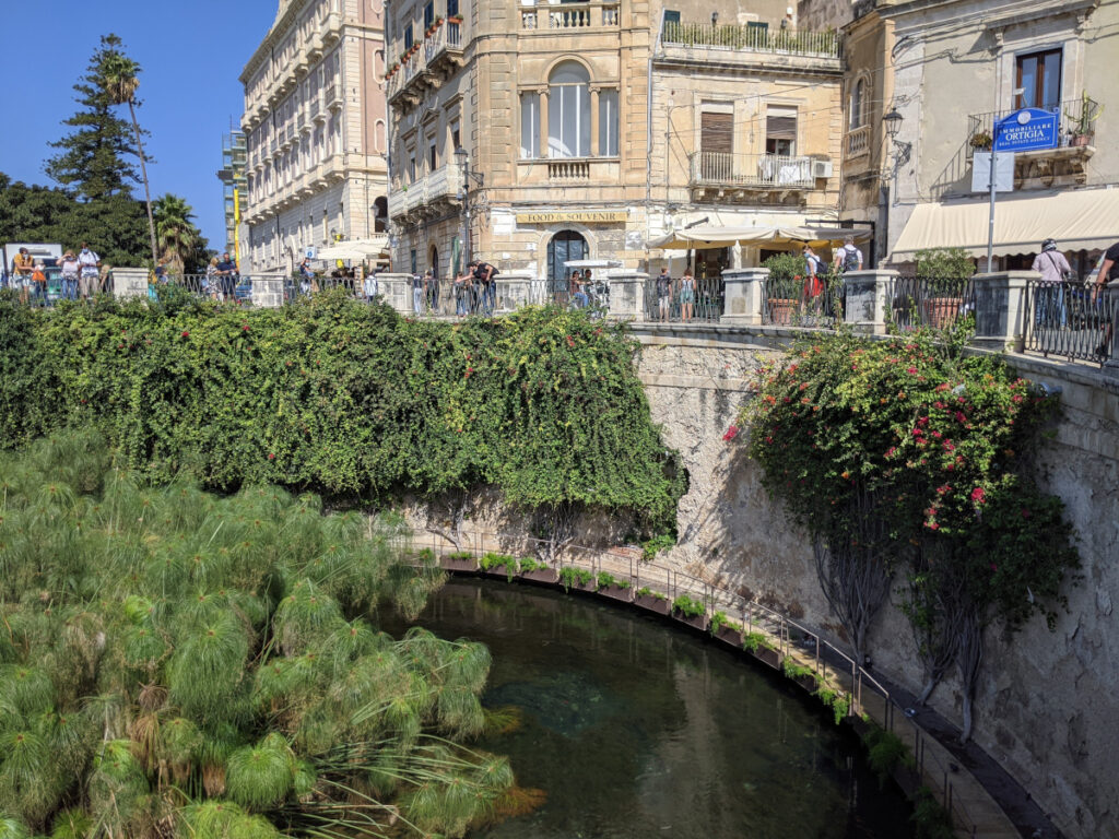 La Fonte Aretusa ad ortigia
